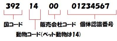 f:id:moca-daily:20200423171909j:plain