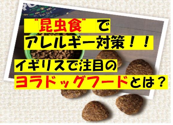 f:id:moca-daily:20200726211222j:plain