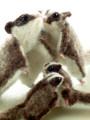 [袋モモンガ][有袋類][人気のペット][ハンドメイド][手作り][羊毛フェルト]