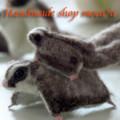 [フクロモモンガ][有袋類][袋モモンガ][ペット][可愛い]