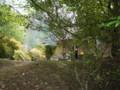 [モカの森工房][制作体験][楽しい][体験][ペット][里山美術展]
