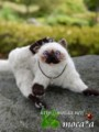 [ペット][子猫][猫][ネコ][ねこ][雑貨][羊毛フェルト][ハンドメイド][20110531]