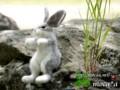 [野兎][Wild rabbit][Дикий кролик][lapin de garenne][ペット][依頼][ぬいぐるみ][オリジナル][オーダーメイド][制作]