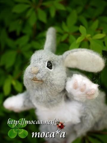 [Rabbit][ウサギ][子兎][うさぎ][ペット][子供][ぬいぐるみ][可愛い画像][雑貨][羊毛フェルト]