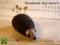 [はりねずみ][ハリネズミ][ピンクッション][オーダー][ペット][ぬいぐるみ][犬][猫]
