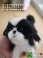 [犬ぬいぐるみ][オーダーぬいぐるみ][シーズ][Ши-тцу][Shih Tzu][シーズぬいぐるみ][写真を基に]