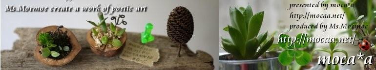 [モカ][art][アート][多肉植物][寄せ植え][絵画][オブジェ][イラスト][彫刻]