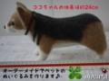 [コーギー犬][犬][ぬいぐるみ][オーダーメイド][制作][モカ]