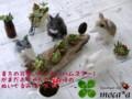 [ハムスター][ゴールデンハムスター][ジャンガリアンハムス][ぬいぐ  るみ][オーダーメイド][ロボロフスキーハムス][飼う][種類][モカ]