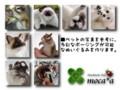 [ペット][犬][猫][ぬいぐるみ][雑貨][オーダーメイド][モモンガ][フクロモモンガ][絵]