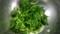 [ほうれん草レシピ][ほうれん草の胡麻和え][ほうれん草のおひたし][ほうれん草サラダ][ほうれん草ナムル][spinach   salad][spinach recipes][rhealthy spinach recipes]
