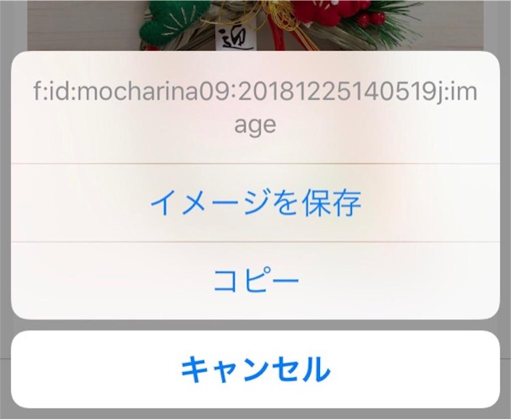 f:id:mocharina09:20181228140551j:image