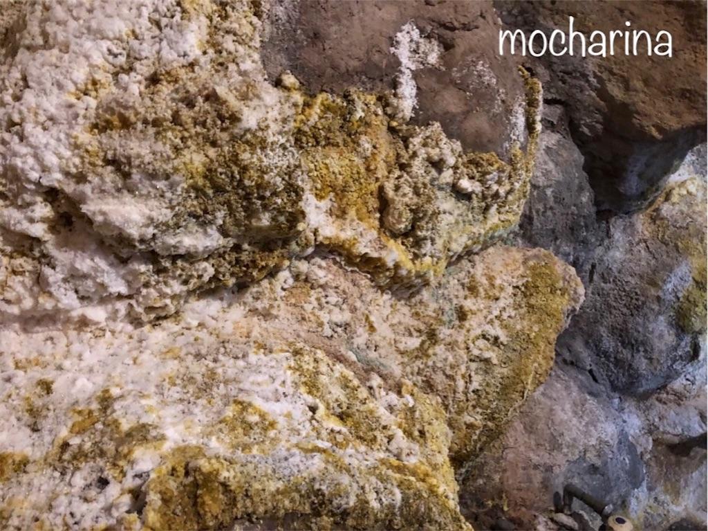 f:id:mocharina09:20191213202611j:image