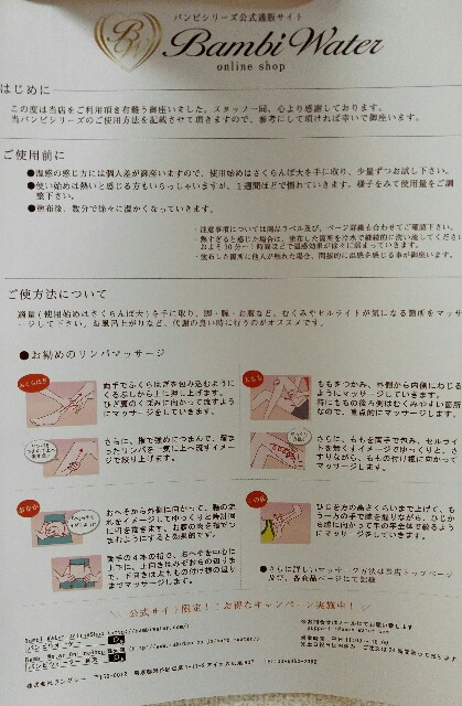 f:id:mochi-ha:20170404220037j:image