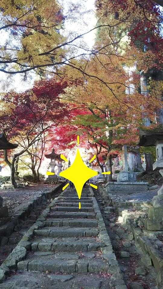 f:id:mochi-kichi:20210130200824j:plain