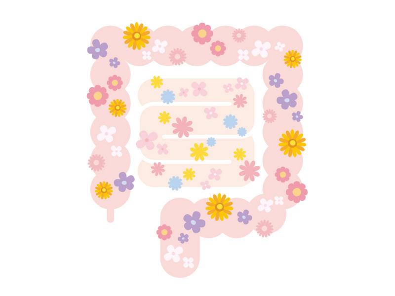 f:id:mochi-mochi-kun:20170316181835j:plain