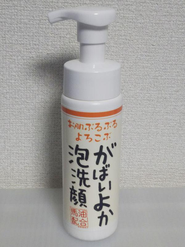 f:id:mochi-mochi-kun:20170621134614j:plain