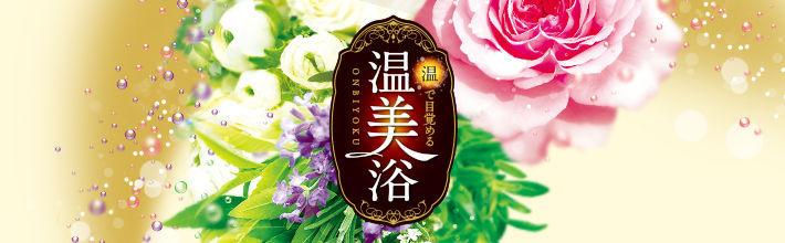 f:id:mochi-mochi-kun:20171217233619j:plain