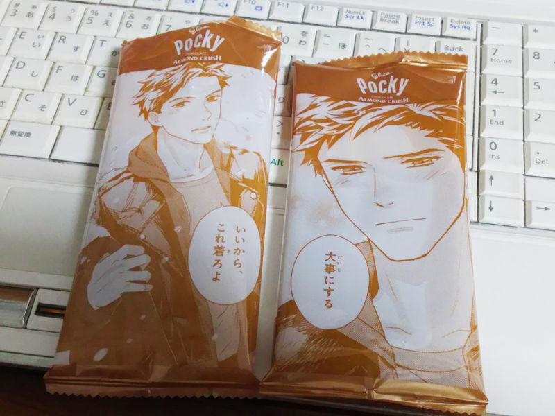 f:id:mochi-mochi-kun:20180101171947j:plain