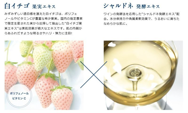 f:id:mochi-mochi-kun:20180113135233j:plain