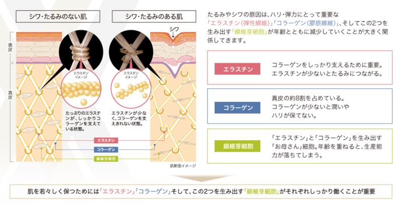 f:id:mochi-mochi-kun:20180821172928p:plain