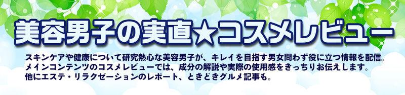 f:id:mochi-mochi-kun:20190114163134j:plain