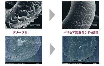 f:id:mochi-mochi-kun:20190307194328j:plain