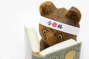 f:id:mochi2neko-iezukuri:20190112162046j:plain