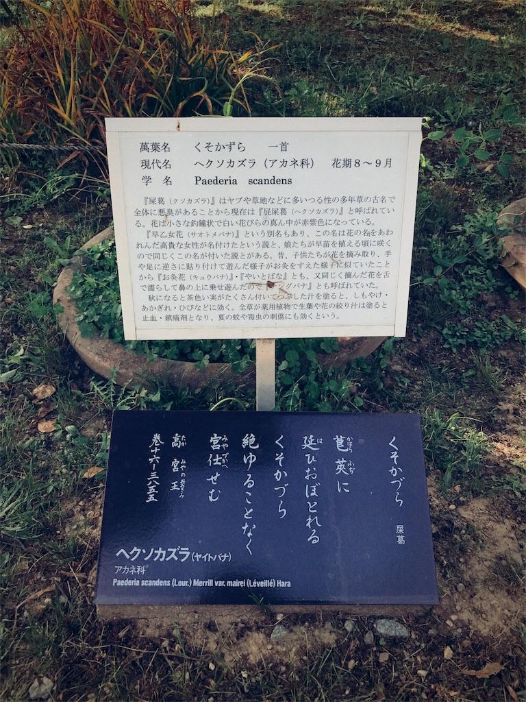 f:id:mochidori:20170509120045j:image