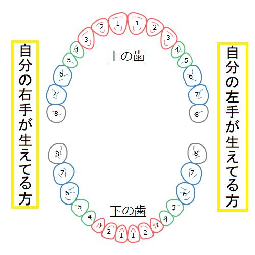 f:id:mochii100415:20181016173232p:plain