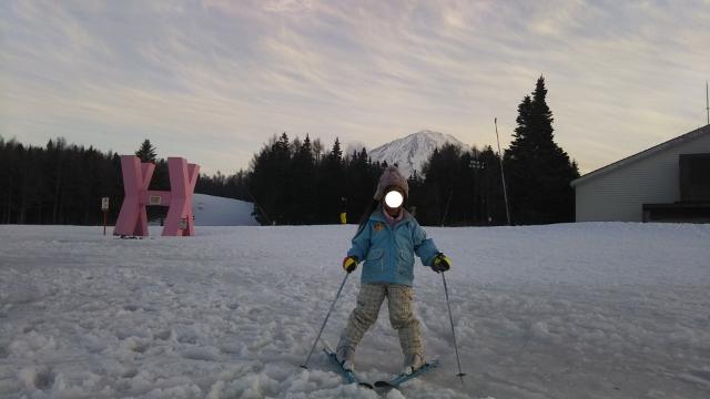 f:id:mochikichi-blog:20200222093822j:plain