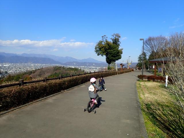 f:id:mochikichi-blog:20200223104530j:plain