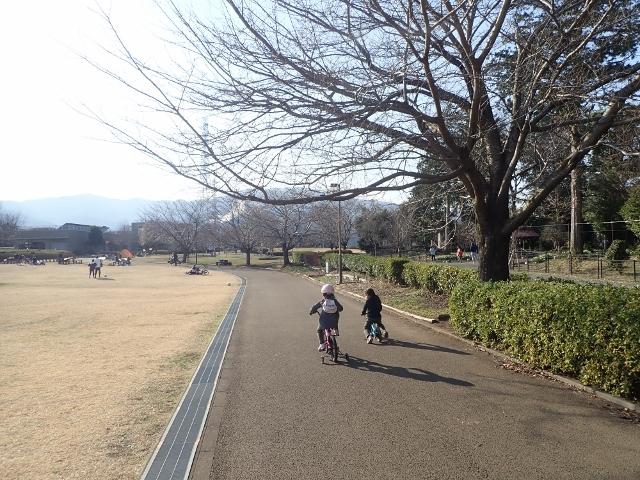 f:id:mochikichi-blog:20200223104542j:plain