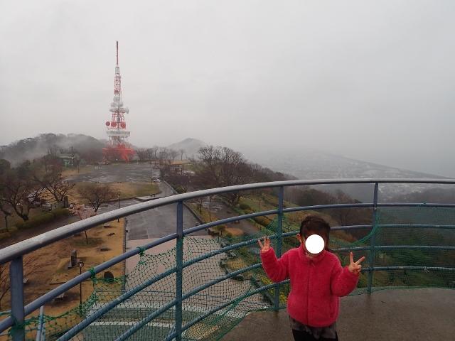 f:id:mochikichi-blog:20200308131656j:plain