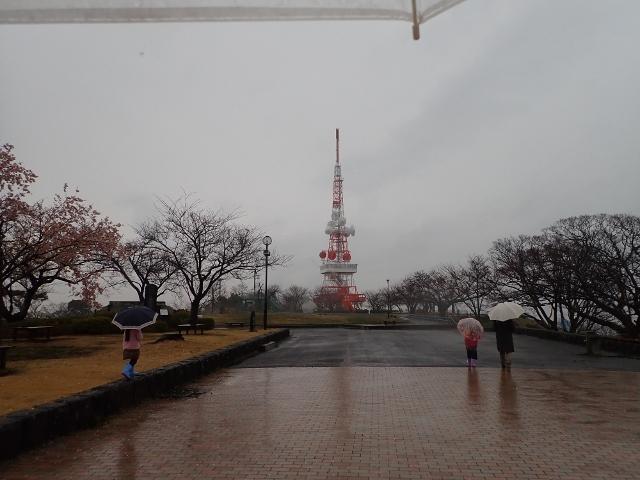 f:id:mochikichi-blog:20200308132612j:plain