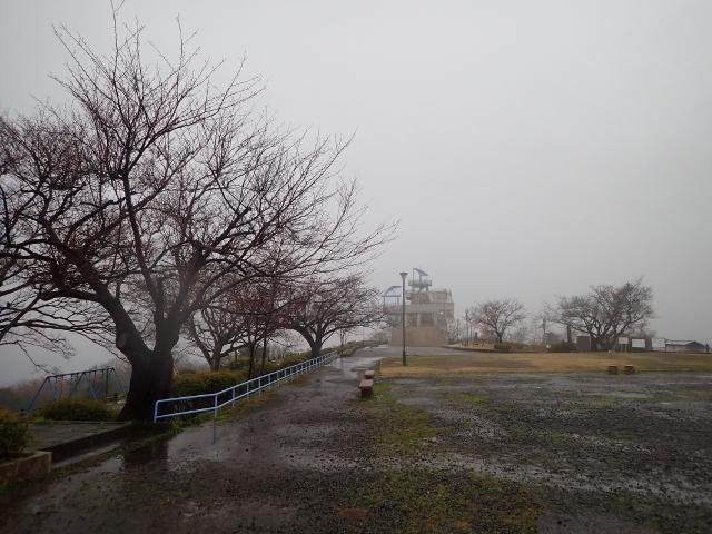 f:id:mochikichi-blog:20200308133528j:plain