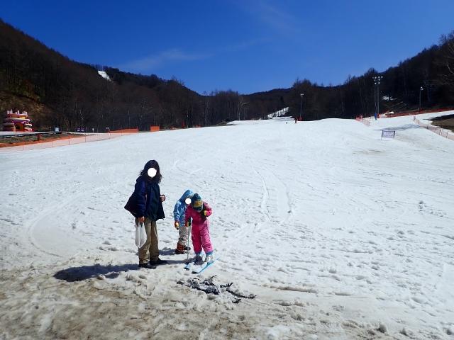 f:id:mochikichi-blog:20200313114516j:plain