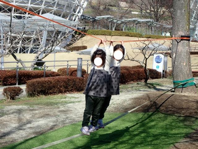 f:id:mochikichi-blog:20200315103428j:plain