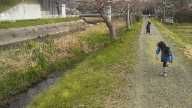 f:id:mochikichi-blog:20200328223734j:plain