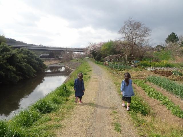 f:id:mochikichi-blog:20200328223855j:plain