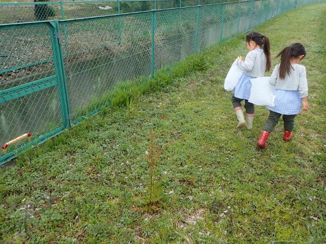 f:id:mochikichi-blog:20200329084612j:plain