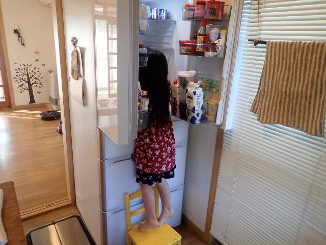 f:id:mochikichi-blog:20200410203156j:plain
