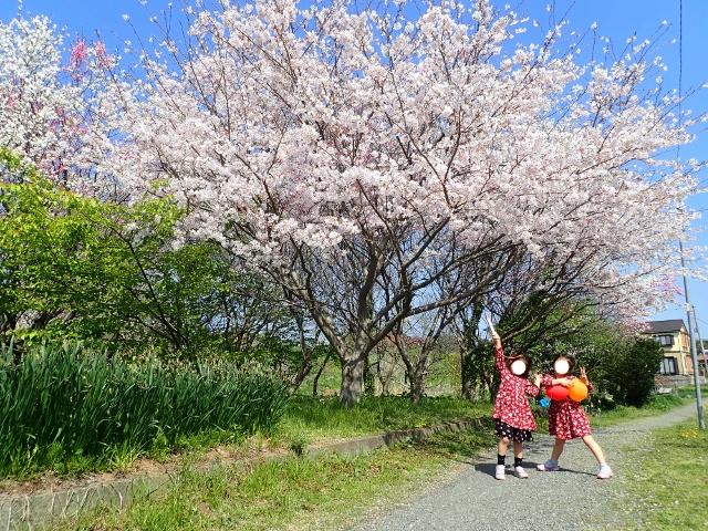 f:id:mochikichi-blog:20200412203644j:plain