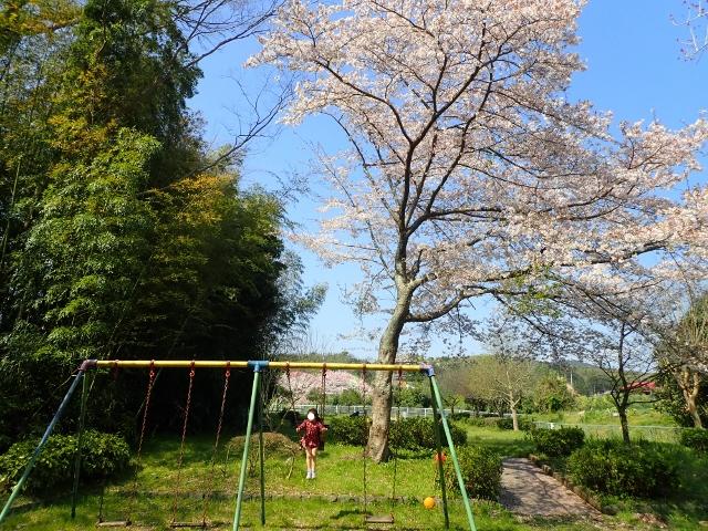 f:id:mochikichi-blog:20200412203658j:plain