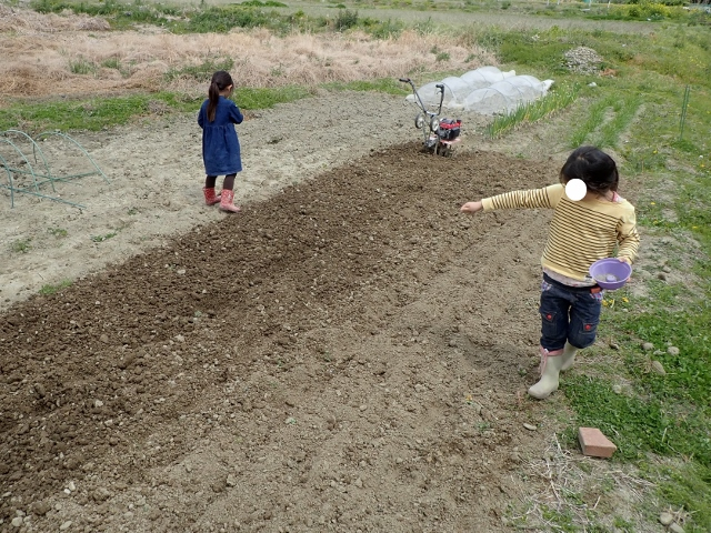 f:id:mochikichi-blog:20200418132746j:plain