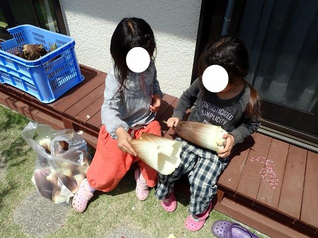 f:id:mochikichi-blog:20200426213009j:plain