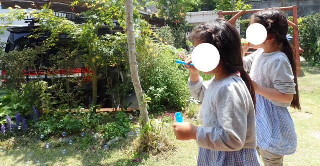 f:id:mochikichi-blog:20200507000101j:plain
