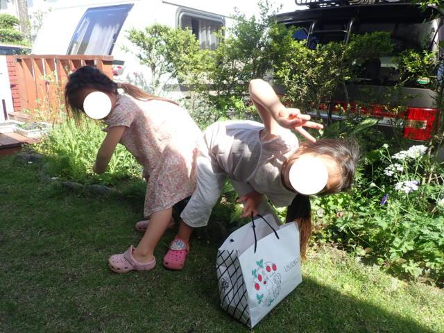 f:id:mochikichi-blog:20200525163202j:plain