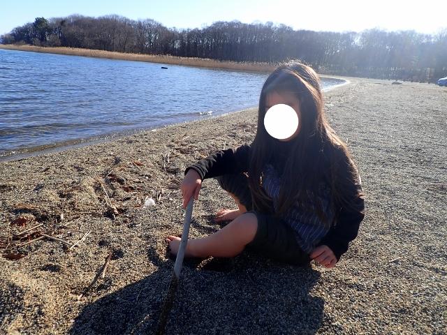 f:id:mochikichi-blog:20200609160551j:plain