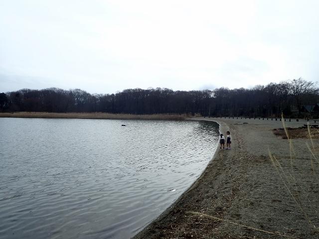 f:id:mochikichi-blog:20200610100128j:plain
